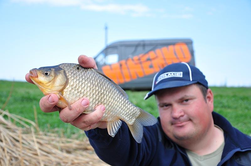 Отдых рыбалка золотой карась краснодарский край